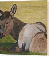 Baby Elk Wood Print