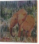 Baby Elly Wood Print