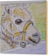 Baby Llama Wood Print