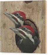 Baby Pileated Woodpeckers Peer Wood Print