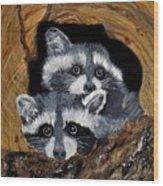 Baby Raccoons Wood Print