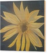 Baby Sunflower Wood Print
