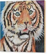 Baby Tiger Wood Print
