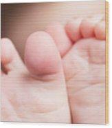 Baby Toes Closeup Wood Print
