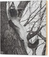 Baby Up The Apple Tree Wood Print