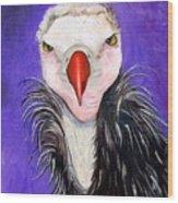 Baby Vulture Wood Print