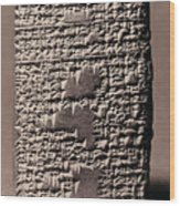 Babylonian Recipies Wood Print