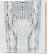 Babylonian Sphinx Lamassu Wood Print