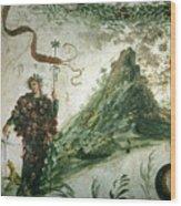 Bacchus, Roman God Of Wine, Stands Wood Print
