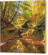 Bach Hollow Wood Print