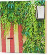 Back Alley Color Wood Print