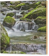 Back Country Stream Wood Print