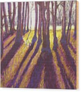Back Lit Field Wood Print