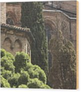 Back Of Church Of The Frari In Venice Wood Print