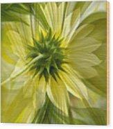 Back Petal Wood Print