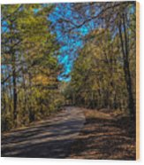 Back Road 5 Wood Print