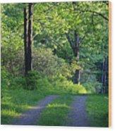 Back Road Wood Print