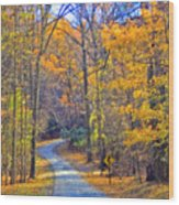 Back Road Fall Foliage Wood Print