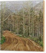 Back Road Home Wood Print