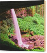 Back Side Of Silver Falls Wood Print