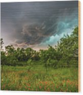 Back To Life - Spring Returns To Western Texas Wood Print