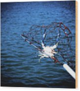 Back To The Bay Blue Crab Wood Print