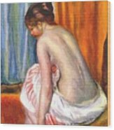 Back View Of A Bather 1893 Wood Print