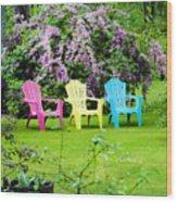 Back Yard Tranquility Wood Print by Jim  Calarese