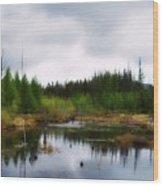 Backcountry Lake - Adirondacks Wood Print