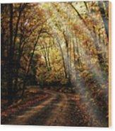 Backcountry Road Wood Print