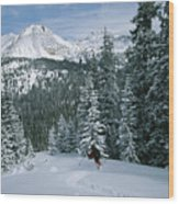 Backcountry Skiing Into An Evergreen Wood Print