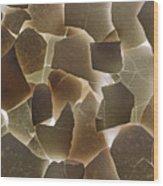 Backlit Broken Egg Shells  Wood Print
