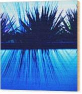 Backlit by Blue Wood Print