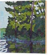 Backlit Pines Wood Print