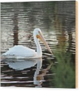 Backwater Serenity Photograph Wood Print