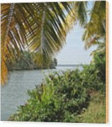 Backwaters Of Kerala-2 Wood Print