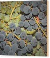 Backyard Garden Series - Grapes And Vines Wood Print