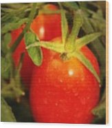 Backyard Garden Series - Roma Tomatoes Wood Print