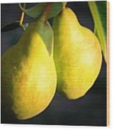 Backyard Garden Series - Two Pears Wood Print
