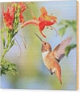 Backyard Hummingbird Series # 54 Wood Print