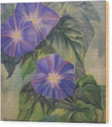 Backyard Morning Glories Wood Print