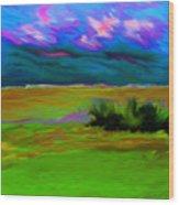 Backyard Sky Wood Print