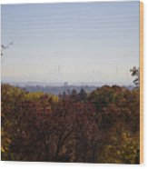 Backyard View Wood Print by Joanna Madloch