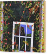 Backyard Window Wood Print