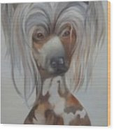 Bad Hair Day Animals With Attitude Series Wood Print