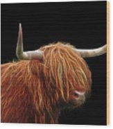 Bad Hair Day - Highland Cow - On Black Wood Print