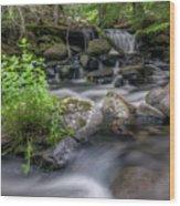 Badger Creek #2 Wood Print