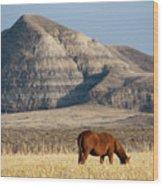 Badlands Canada Saskatchewan Wood Print