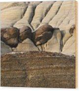 Badlands Drumheller Alberta Canada 4 Wood Print