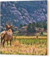 Badlands Elk  Wood Print